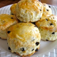 Sour Cream and Currant Scones