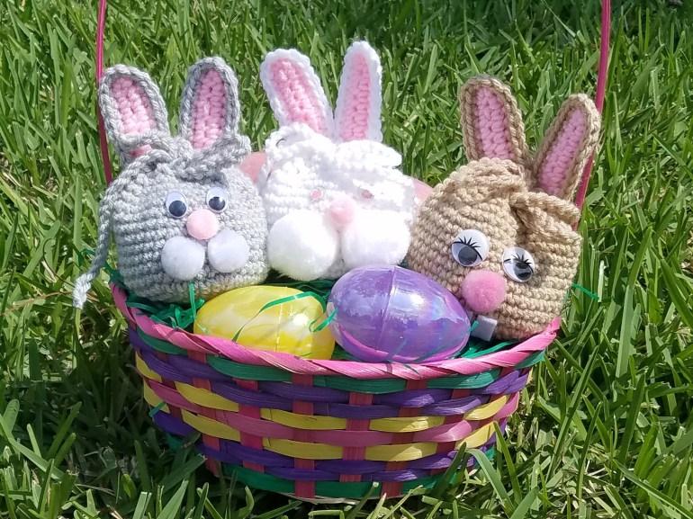 bunny in sun