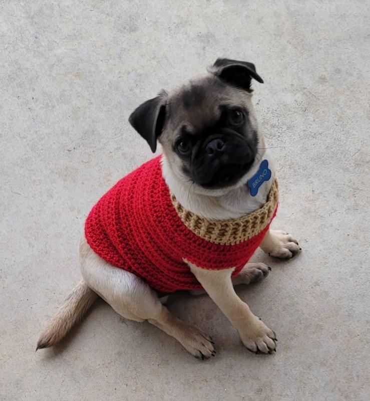 Bruno Sweater Small