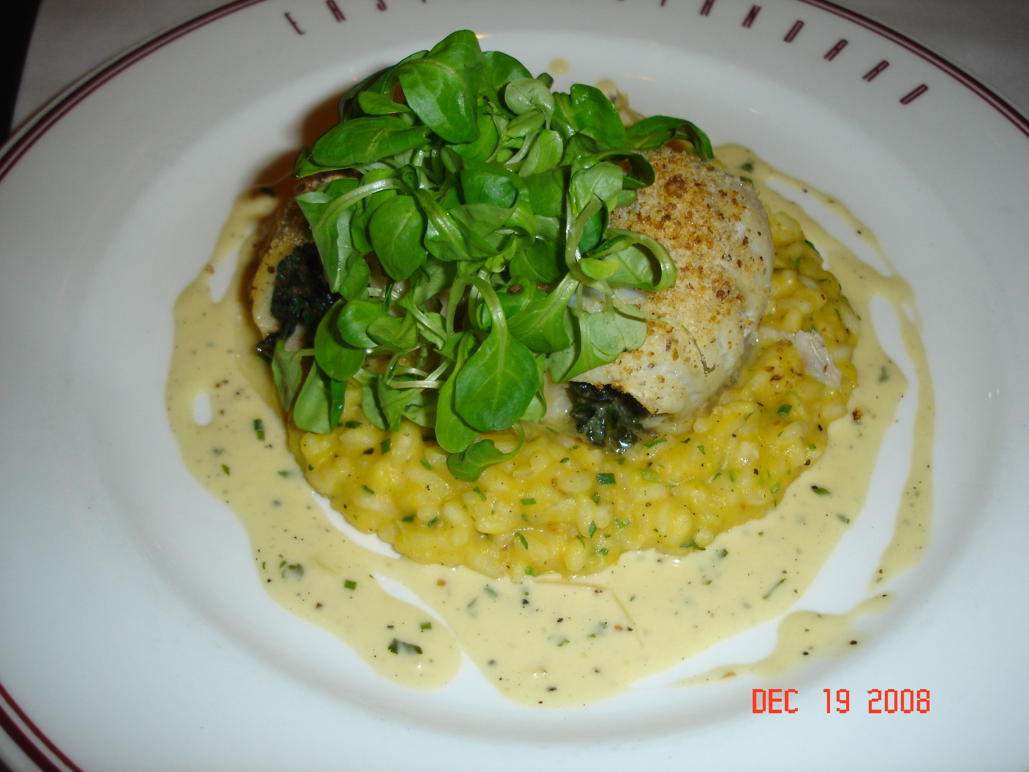 Sole with Pumpkin Risotto - Special of the Day
