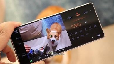 Sony號召寵物飼主體驗Xperia 1 II 推出三倍券優惠