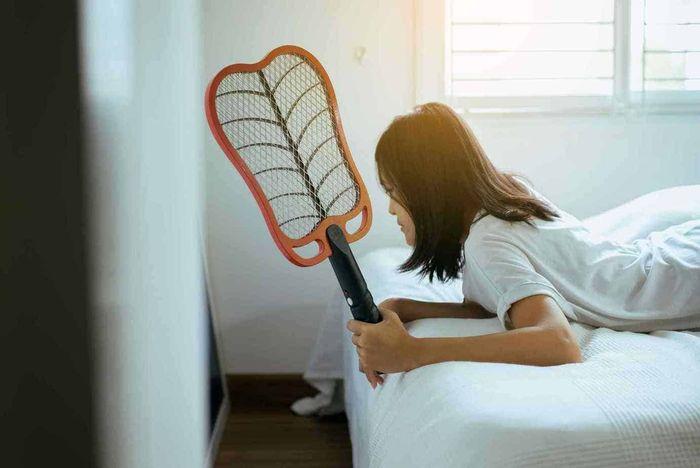 如何選購電蚊拍?
