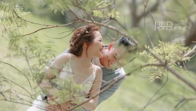 攝影師紅刺蝟的首選相機 Canon EOS R6人像、婚禮密技攻略