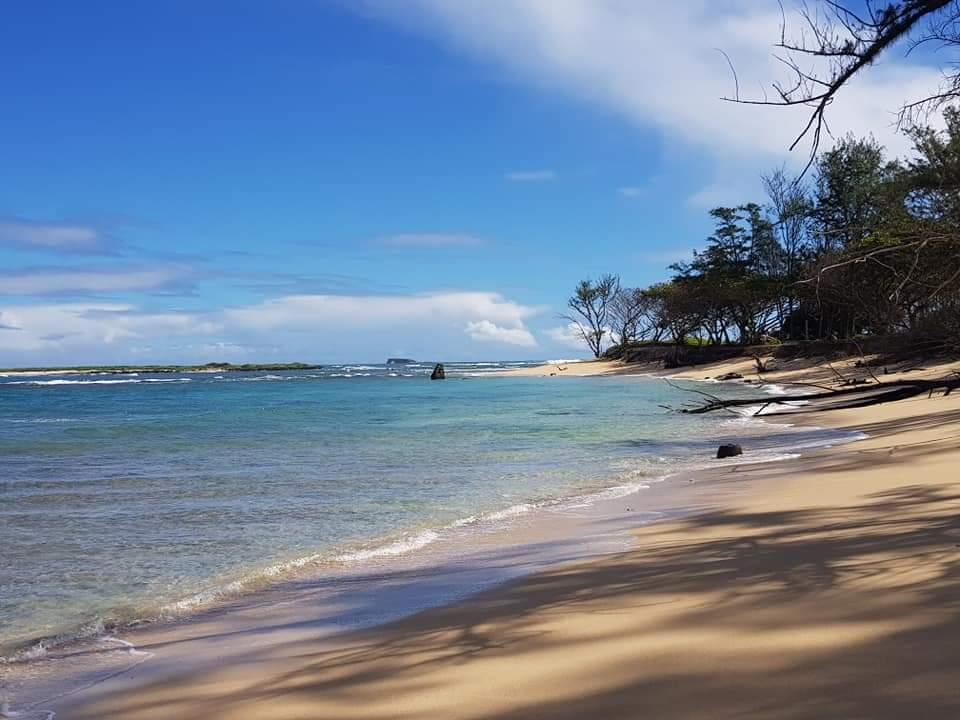 Strand på Hawaii