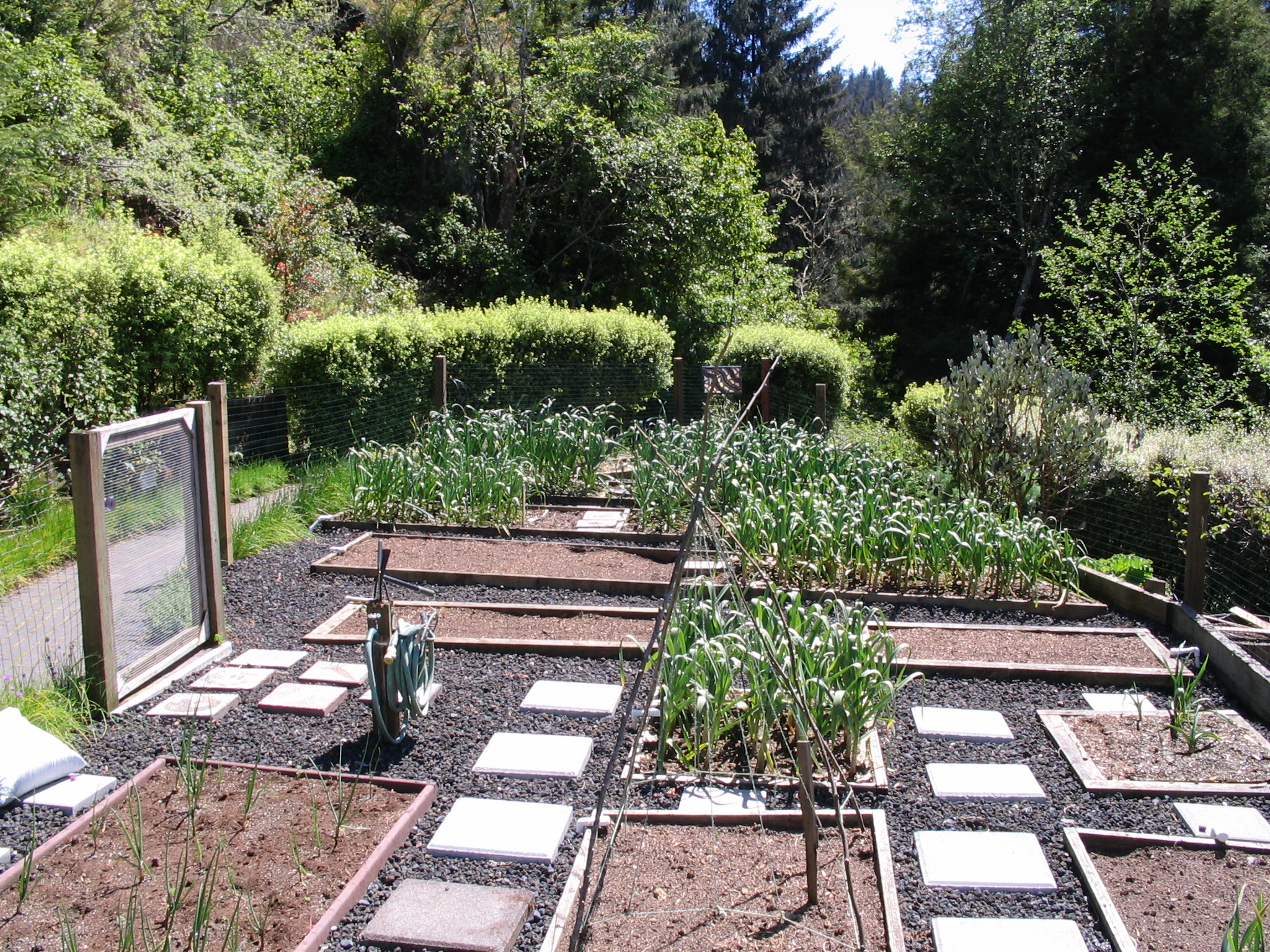 Home Gardens  Food For Thought Blog