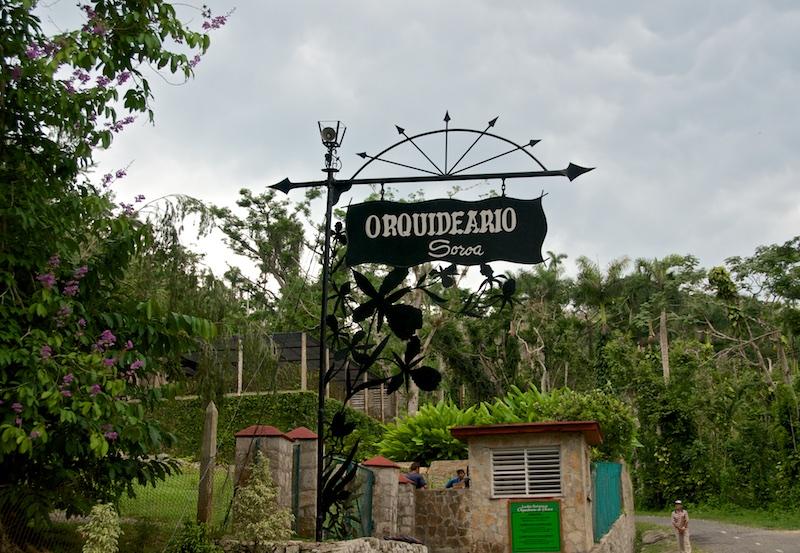 "Куба, сад орхидей ""Soroa"""