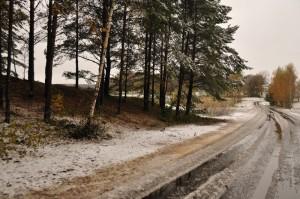 Первый снег в Михайловском