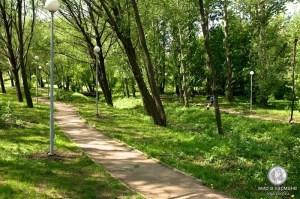 Парк около пруда