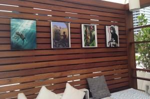 Art Institute, Ft Lauderdale Cabana