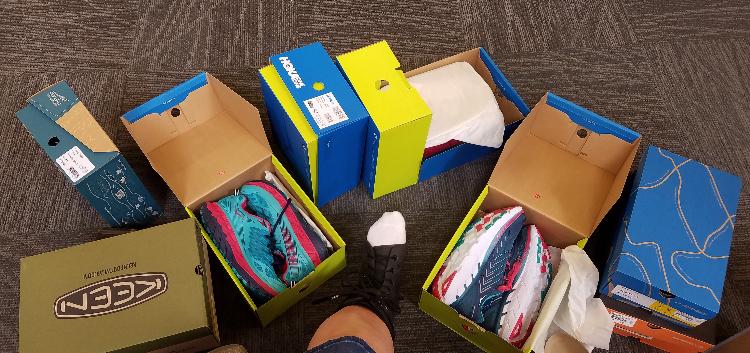 Shoe Fits