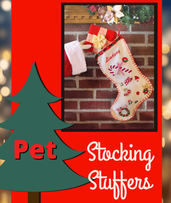pet stocking stuffers
