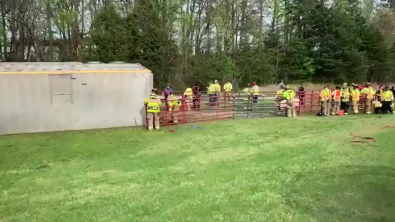 Tractor-trailer with livestock inside overturns in Winston-Salem