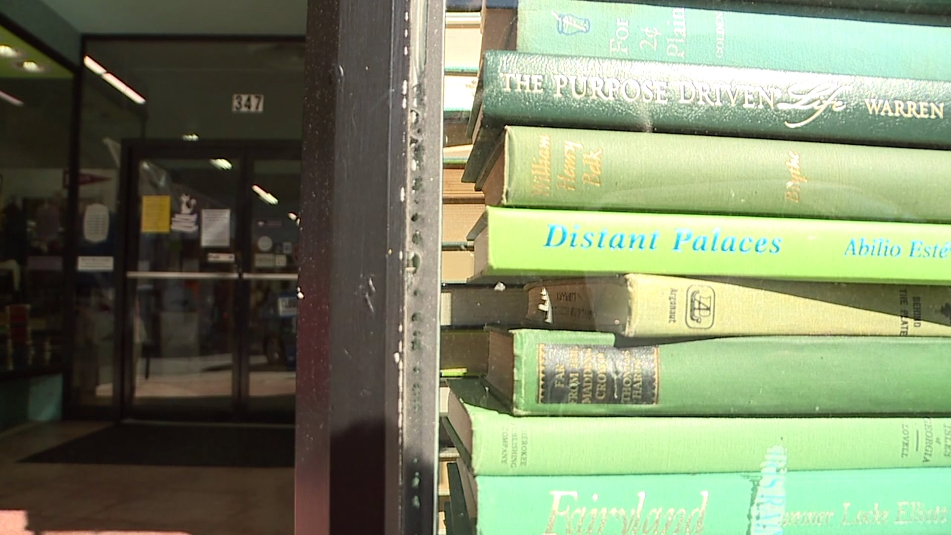 Small Business Spotlight: Persnickety Books in Burlington