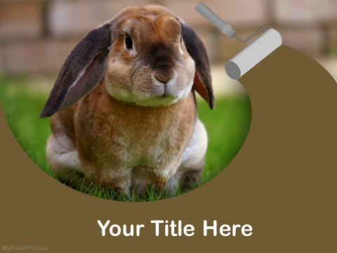 Free Bunny PPT Template