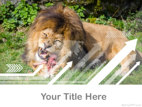 Free Cathemeral Animals PPT Template