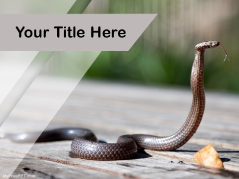 Free Cobra PPT Template