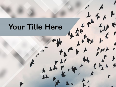 Free Freedom PPT Template
