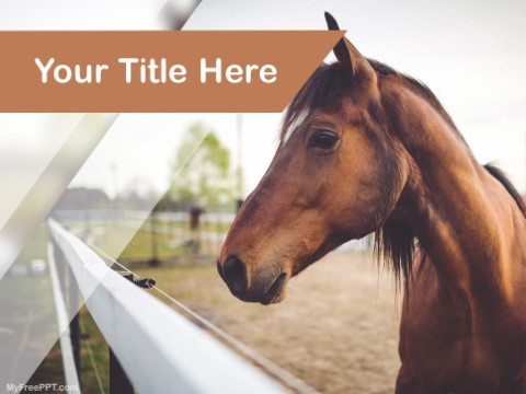 Free Horse PPT Template