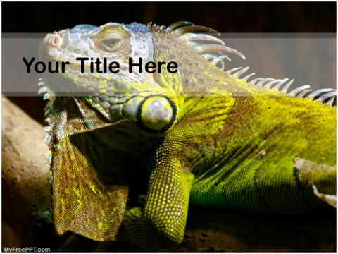 Free Reptilian PPT Template