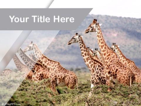 Free Wildlife PPT Template