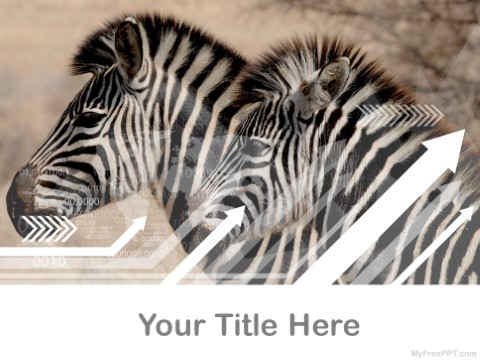 Free Zebra PPT Template
