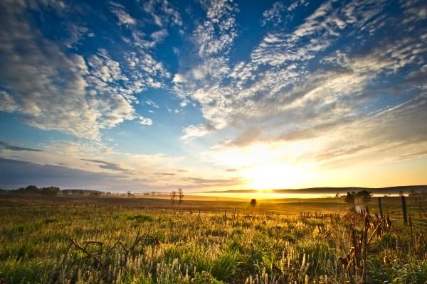 good morning landscape bryant