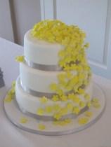 Sunshine-Lemon cake