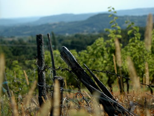 fences of correze 8