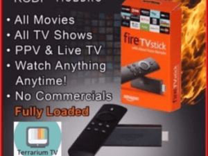 STEP BY STEP HOW TO RESET AMAZON FIRESTICK IN EASE - My