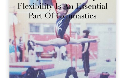 Top 3 Reasons Why Flexibility Is An Essential Part Of Gymnastics