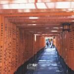 [JAPAN] Fushimi Inari-Taisha 伏見稲荷大社 in southern Kyoto