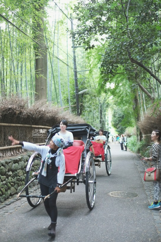 Rickshaw Ride at Arashiyama Bamboo Grove by Myfunfoodiary