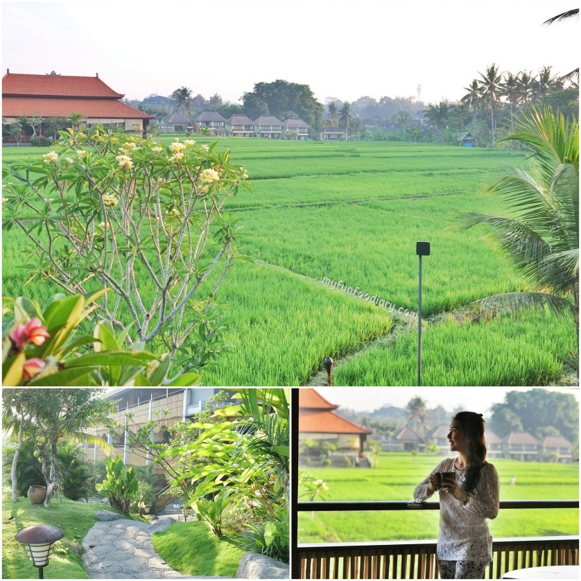 View From Our Room at Alaya Resort Ubud by Myfunfoodiary v2
