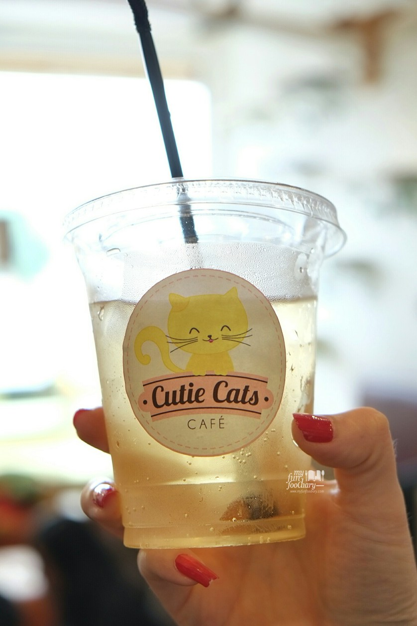 Apple Sparkler at Cutie Cats Cafe by Myfunfoodiary