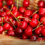 [JAPAN] Enjoy Seasonal Fruit Cherries from Tohoku, Japan