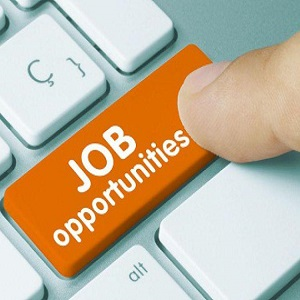 Technical Sales Executive needed at Talents and Skills Africa Consulting LLC