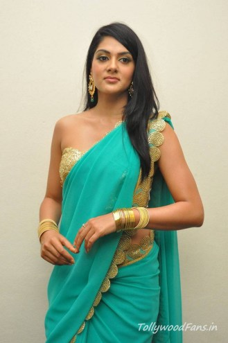 sakshi-chaudhary-photos-in-saree-4