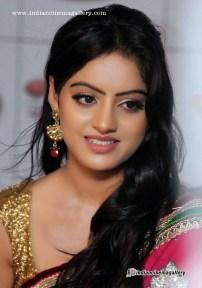 Deepika-Singh-Stills-(1)3824