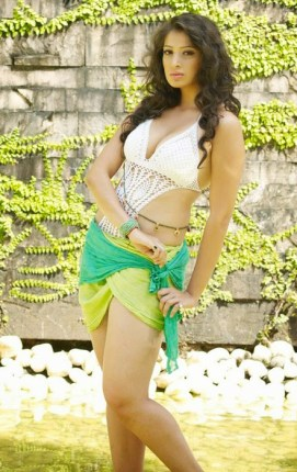 Lakshmi Roy Laxmi Rai Hot Cute HD Sizzling Cleavage Navel Boobs Images Pictures Photo Shoot Wallpapers Gallery Saree Thighs Exposed 1