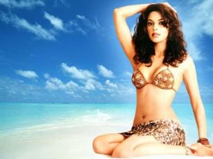 mallika-sherawat bra and bikini photo