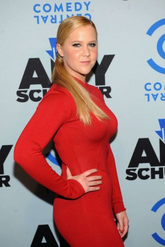 """attends """"Inside Amy Schumer"""" Premiere Screening Party at Hudson Terrace on April 24, 2013 in New York City."""