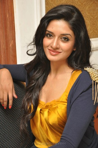 Vimala-Raman-New-Stills-At-Press-Meet-06