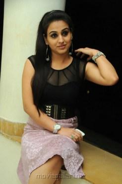 Actress Aksha Pardasany Hot Photos at Satruvu Audio Release