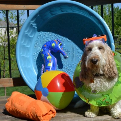 Staying Cool In My Pool | GBGV