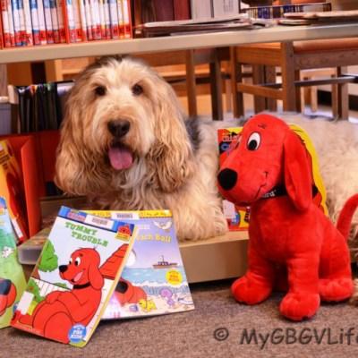 My Library Visit | GBGV