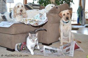 Friends reading the Sunday paper!