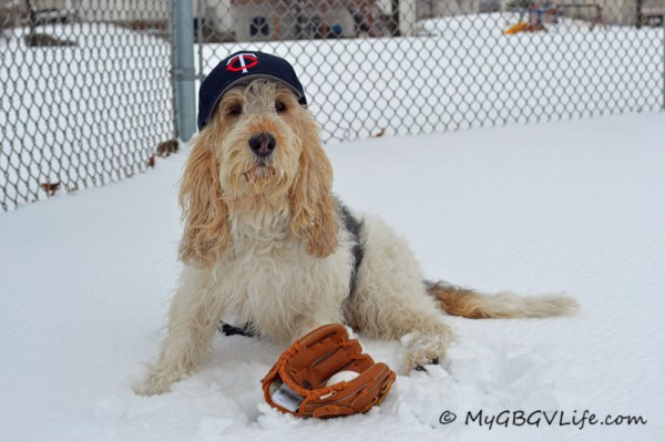 Who really needs to see the field to play a little spring baseball? Imagination is where it is at!