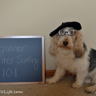 Beginner Counter Surfing 101 | GBGV | Monday Mischief