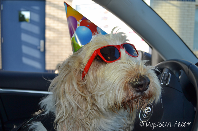 party driver