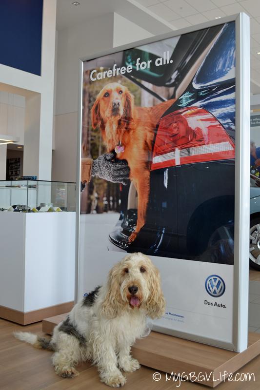 GBGV dog VW sign